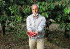 Sandıklı'da dolu ve yağmur tarım arazilerine zarar verdi
