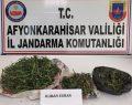 Jandarma, kubar esrar ele geçirdi