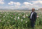 Taytak haşhaş ekimi yapılan tarlaları inceledi