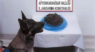 Afyon'da uyuşturucu satıcısı yakalandı