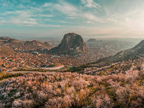 Afyon'da çiçek açan badem ağaçları, baharı müjdeledi