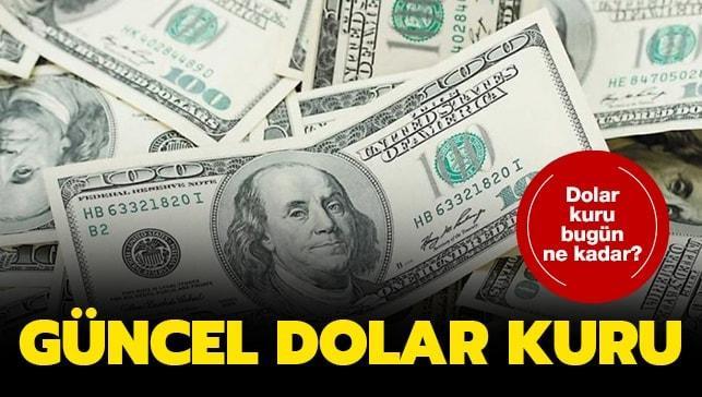 Dolar ve euro ne kadar oldu? (25 Haziran 2020)