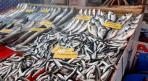 Afyonlular Korona virüse karşı bu yıl daha fazla balık tüketiyor